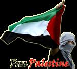 Bukan Anti Yahudi, tapi Anti Zionis. Bukan Pro Hamas, tapi Prihatin dengan Rakyat Palestina.