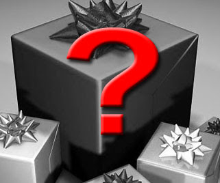 Christmas Gift to Give?