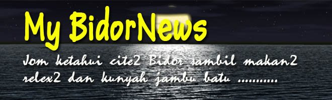 My BidorNews