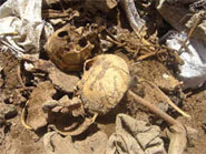 Genocide and annihilation of the Isaq family of Somaliland