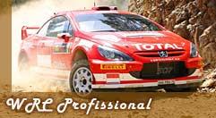 Botão para dicas no WRC Profissional