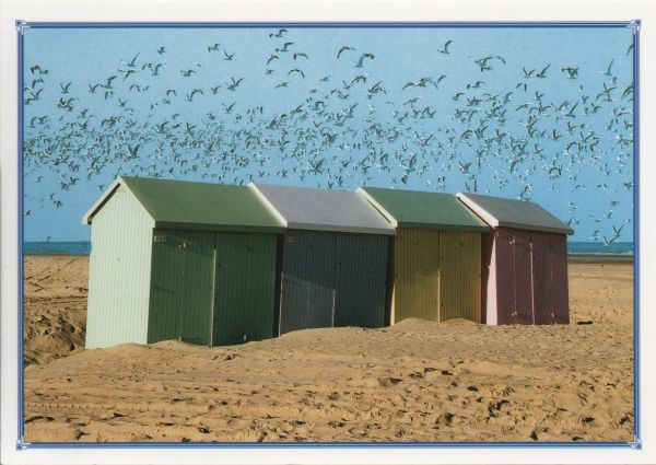 three beach huts on sandy beach