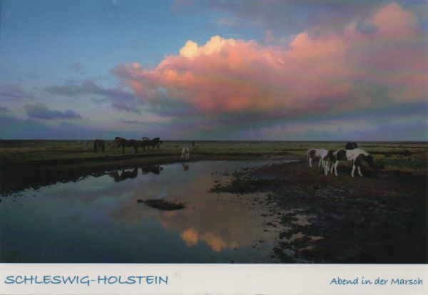 postcard showing a rural scene at sunset in Schleswig-Holstein