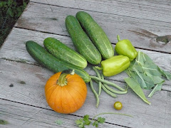Garden bounty, New Jersey