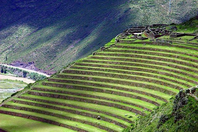 Terasasta polja  Terasasta-polja-pirinca-10