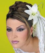 Arayesh Arabi http://venus-beauty-cosmetic.blogspot.com/2007_06_08_archive.html