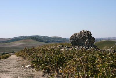 Cerro de La Torre. Al fondo, la torre de Torrecera