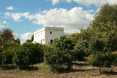 Cortijo de San Andrés