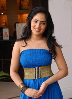 Nikesha Patel Latest Photo Stills 13