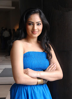 Nikesha Patel Latest Photo Stills 9