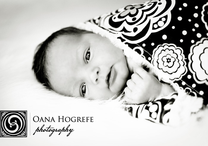 decatur newborn photographers