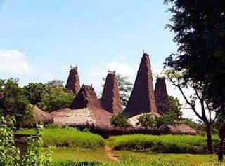 Rumah-Sao-ata-mosa-lakitana-NTT-traditional-house