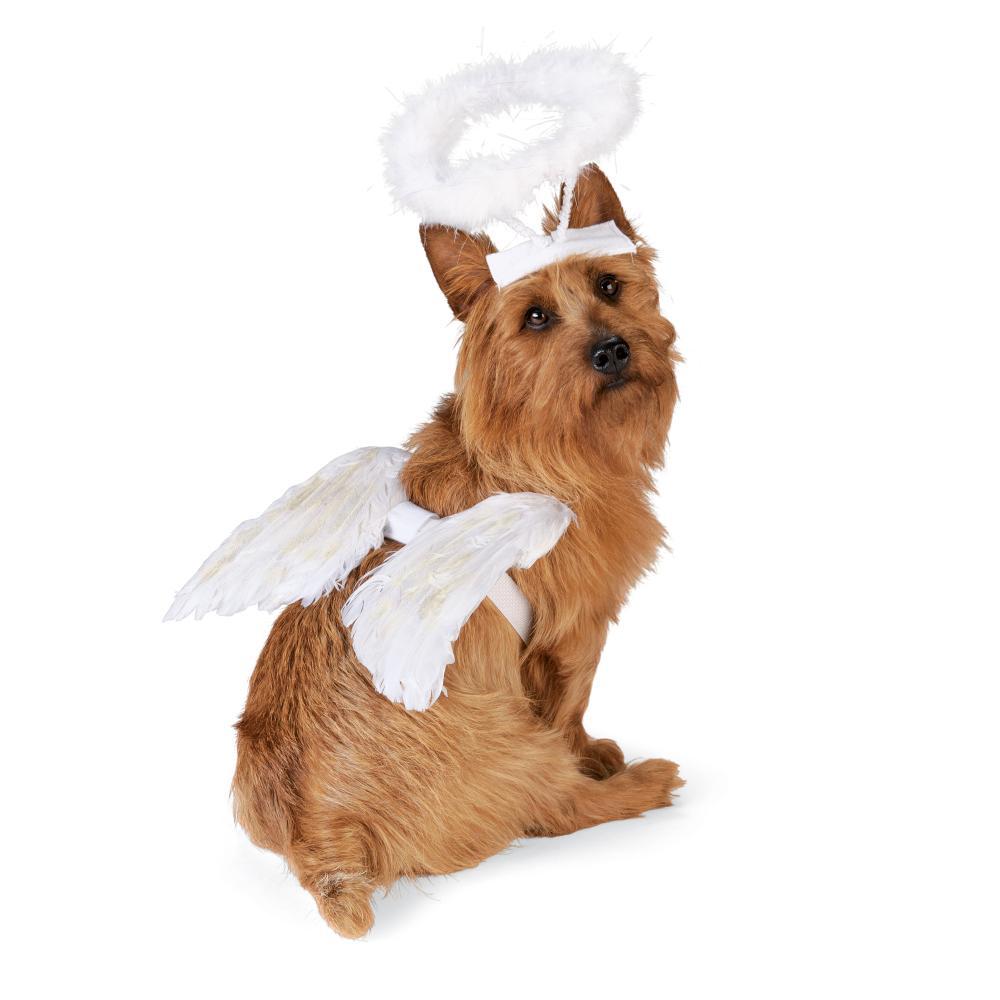 halloween costumes angels