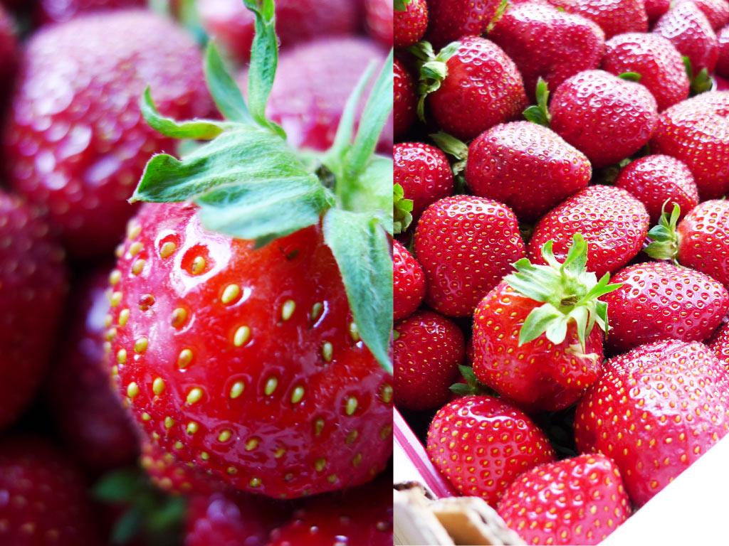 Honey dijon confitures fraise figue framboise for Fraise pour perceuse dijon