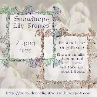 http://snowdropslighthouse.blogspot.com