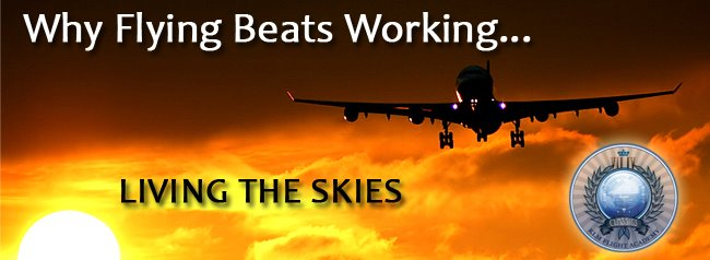Why Flying Beats Working...