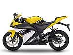 2008 Yamaha YZF-R125 | Yamaha Pictures 20