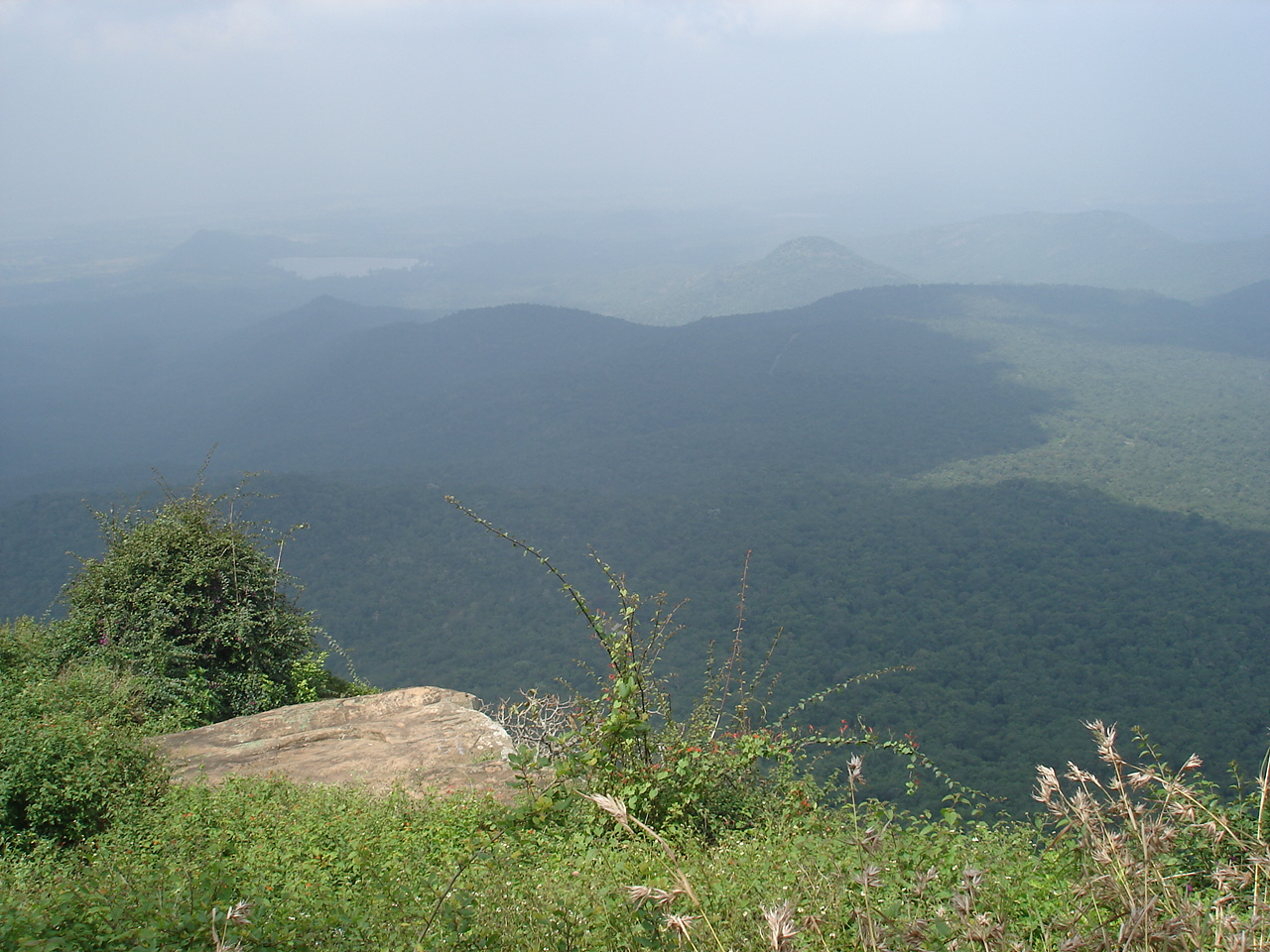 Biligiri Sri Ranganathaswamy Temple or BR Hills