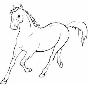 Running Horse Coloring Pages Printable