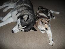 Kaya & Chloe
