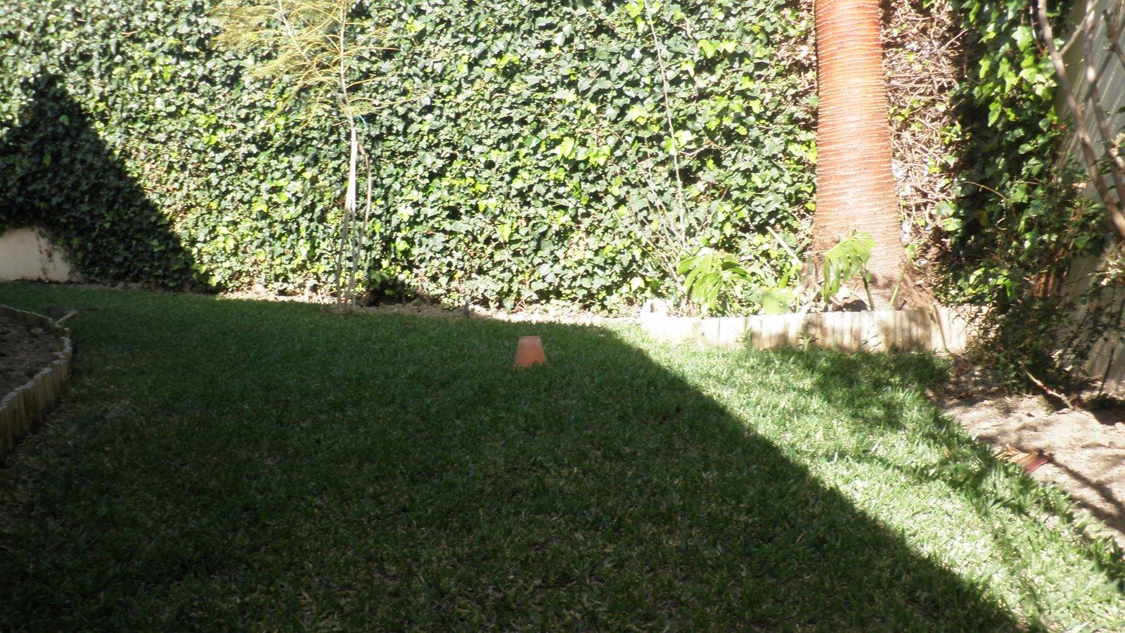Jardinbio jardin peque o comienzo de decoracion 2 - Arriate jardin ...