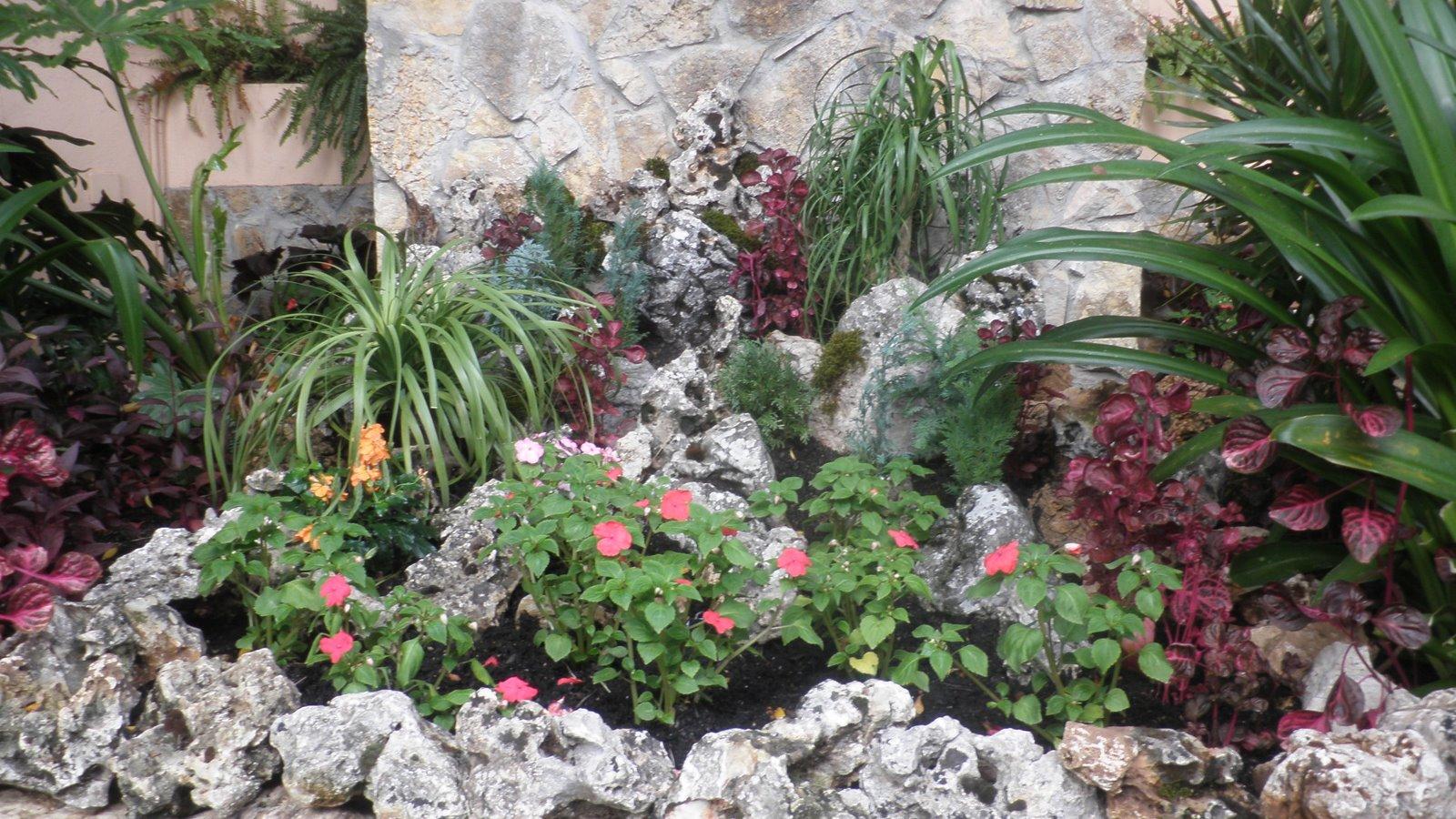 Jardinbio decoraci n con rocalla 50 terminada for Plantas para rocallas
