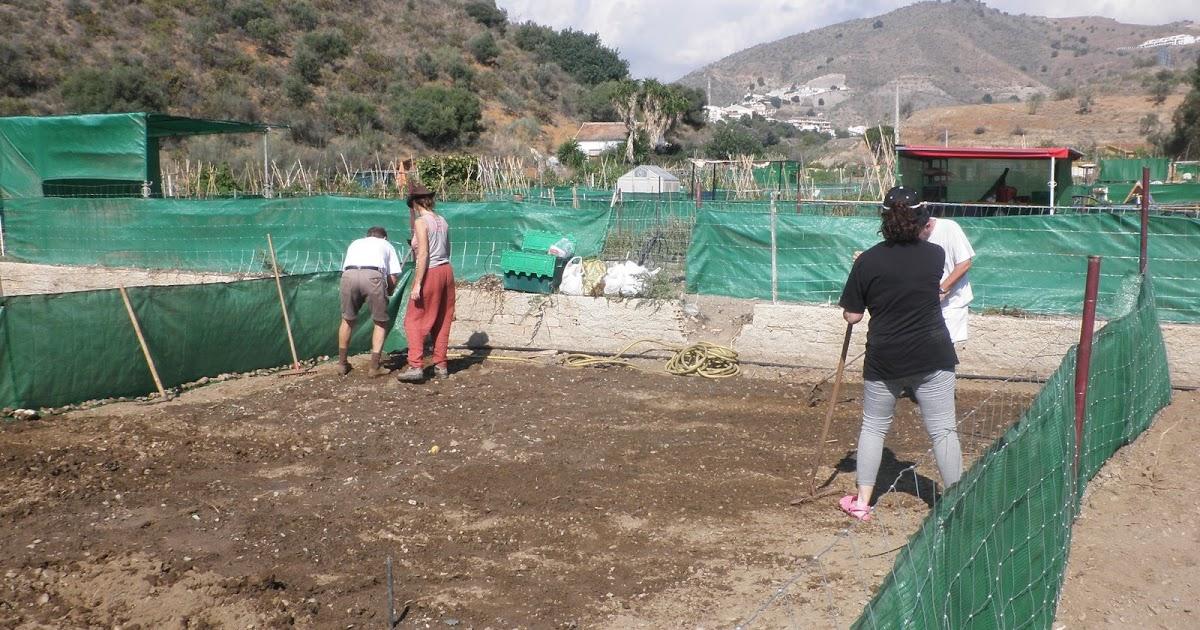 Jardinbio el huerto oto o invierno y primavera verano for Preparar el huerto en invierno