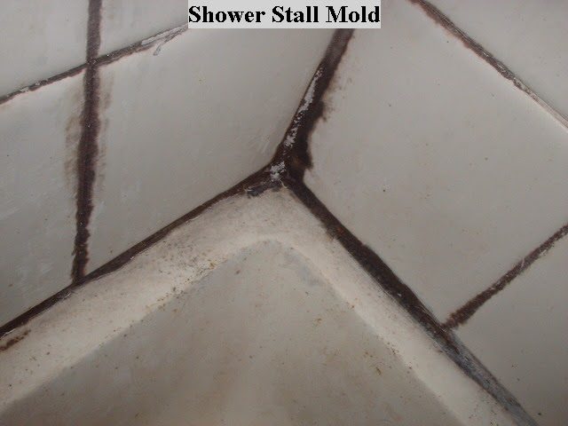 Tip of the day shower mold ask my contractor - Cleaning mold off bathroom walls ...