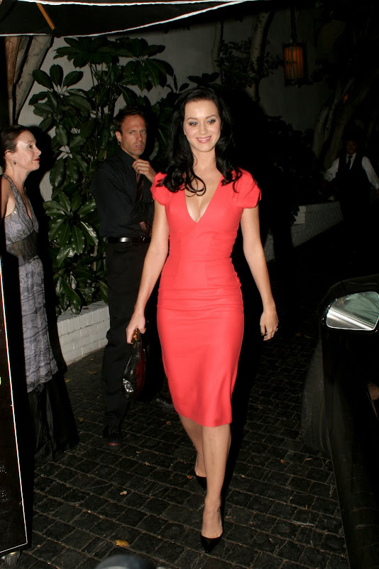 Katy Perry Looking Beauty In Party