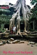 Ta Phrom Temple, Angkor, Cambodia