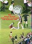 1981 Antrim Final Dall v  B`castle