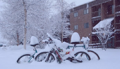 Image of snow-covered bikes in Alaska