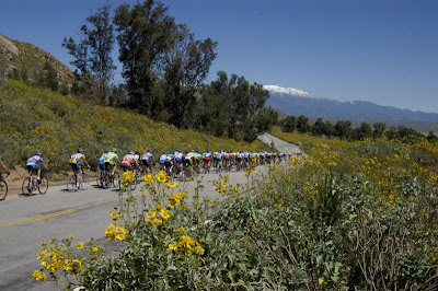 Image of racers at the Redlands Bicycle Classic