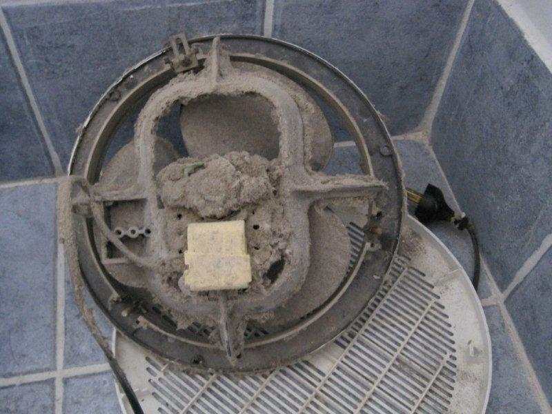 Frugal bastard exhausted exhaust fan for 3 bathroom exhaust fan