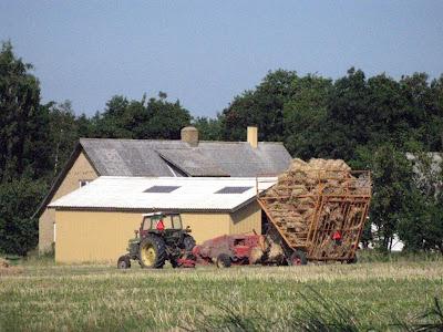 Straw baling - Strib, Danmark