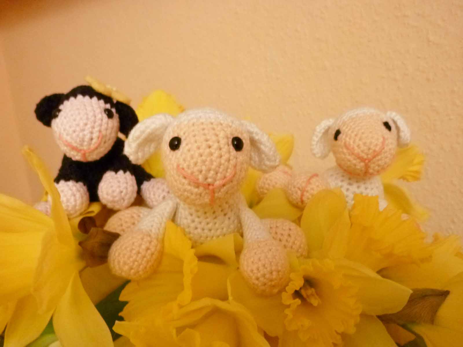World Of Amigurumi : World of Amigurumi: Schafchen