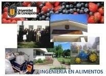 Centro de Estudiantes Ingeniería en Alimentos Universidad de Concepción