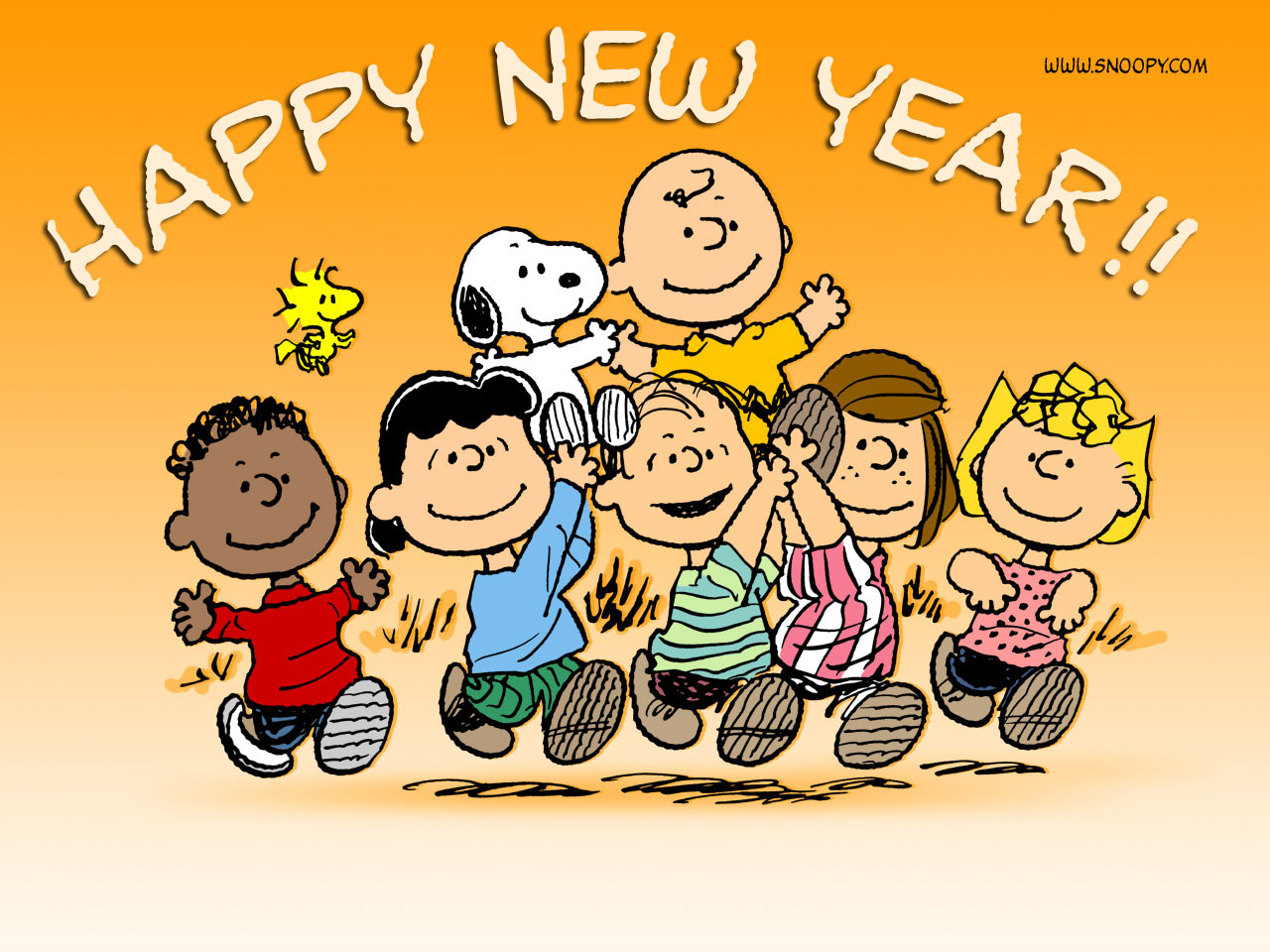 http://3.bp.blogspot.com/_jgQFPPeMTek/TR3-mg9TqOI/AAAAAAAABKU/vI5ETfKhVu4/s1600/Happy_New_Year%252C_Charlie_Brown%2521.jpg