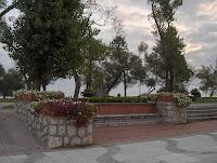 Estampa floral en el parque del Dr. Mesones