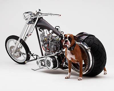 http://3.bp.blogspot.com/_jiLsBLaOvzE/SlT5qd4Xk1I/AAAAAAAAA0Y/g3s2xPN2pVk/s400/Harley+Davidson+modified.jpg