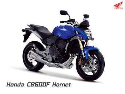 Custom Honda CBF 600 Hornet