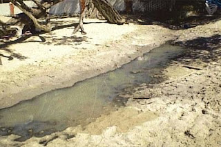 Wastewater on La Ropa Beach between La Perla Restaurant and Las Urracas Bungalows