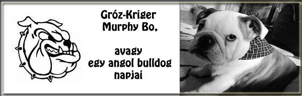 Gróz-Kriger Murphy Bo