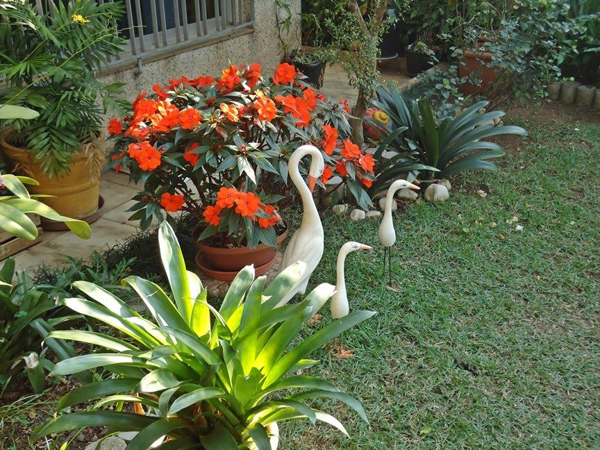 Preferência Lar do Verde: O Jardim da Frente DD69
