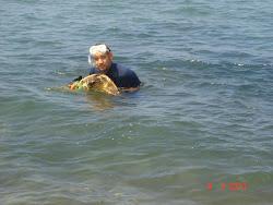 Την χελώνα την βλέπαμε