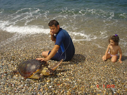Την χελώνα την ονόμασαν οι κόρες μου ΚΑΝΕΛΑ