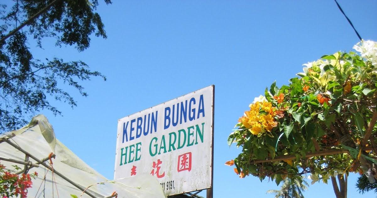 MY GREEN FINDER | Plant Vendors: Hee Garden
