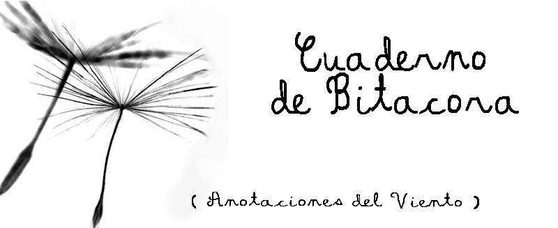 ॐ Bitácora del Viento