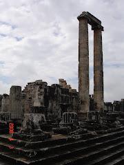 Ναός Διδυμαίου Απόλλωνα-Σήμερα