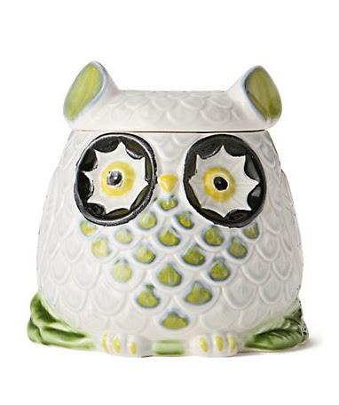 Purchase Worthy Owl Cookie Jar